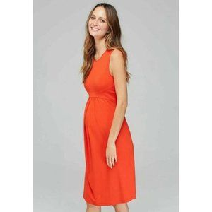 Isabella Oliver Coraline Stretchy Maternity Dress